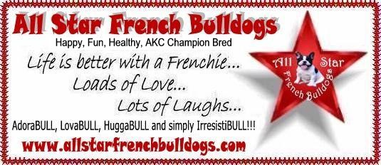 French Bulldog Purchasing Tips - How to avoid getting
